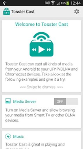 Tosster Cast DLNA UPNP Player截图1