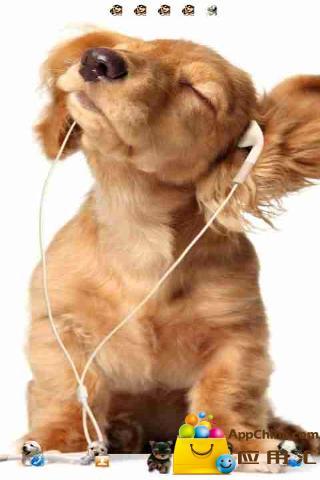 GO主题-可爱狗狗