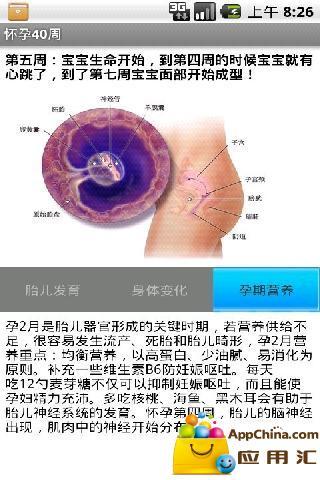 怀孕40周截图3
