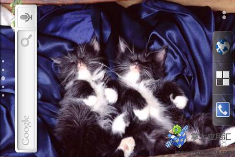 简介: 一款可爱小猫的动态壁纸,其实就是不断的播放小猫图片的幻灯片