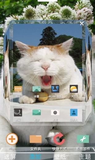 傲娇大懒猫叔-3D桌面主题