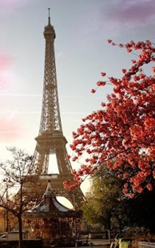 """最美丽的""""埃菲尔铁塔的图片""""可在市场上!"""