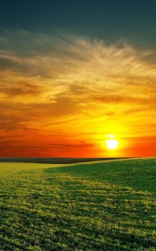 完美的日出的动态壁纸截图7