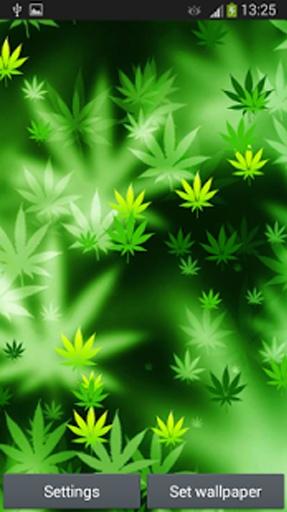 """只要下载这个""""大麻墙纸""""和绿叶你的手机屏幕上飘落下来,将打击你的"""