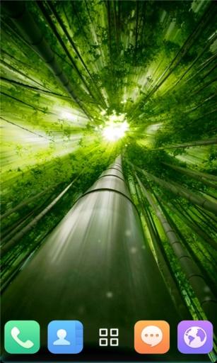 荧光竹林-动态壁纸 工具 App-癮科技App