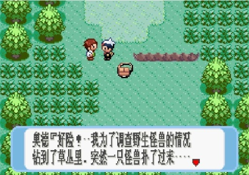 口袋妖怪红宝石截图4