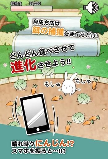 这货是兔子?