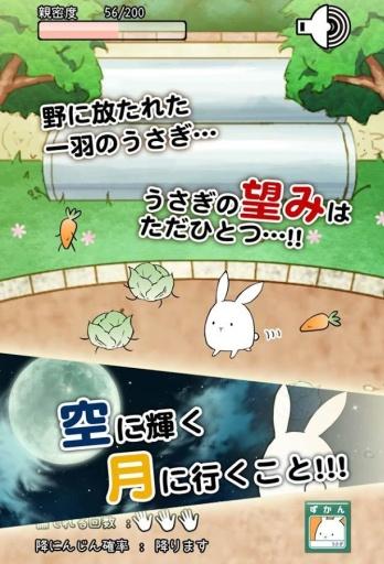 这货是兔子? 截图1
