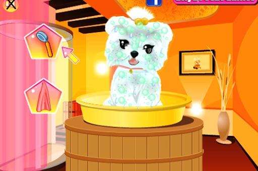 可愛的小狗裝扮寵物沙龍截图0