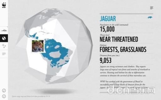 世界野生动物在一起WWF截图4