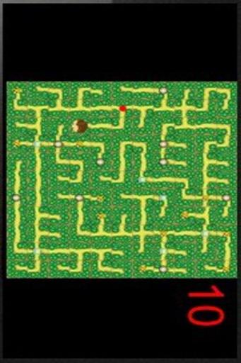 单机游戏-单机迷宫