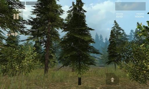 7天生存:森林