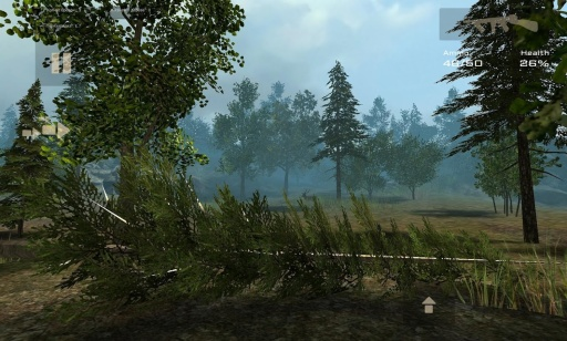 7天生存:森林截图2