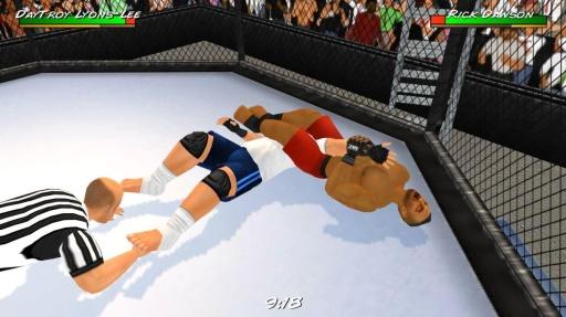 摔角革命3D截图10