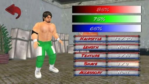 摔角革命3D截图3