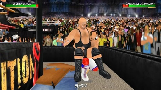 摔角革命3D截图4