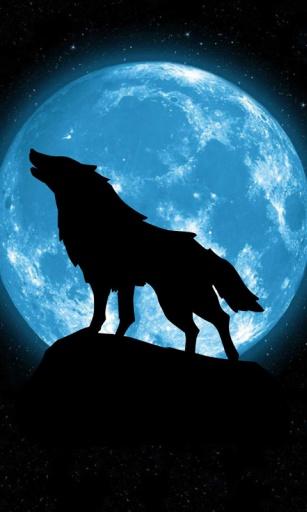 远方的狼动态锁屏壁纸