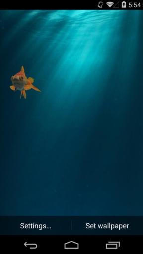 3D金鱼-梦象动态壁纸