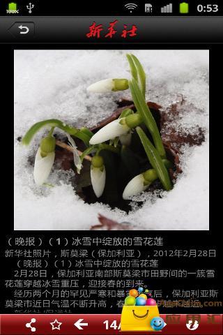新华社新闻截图3