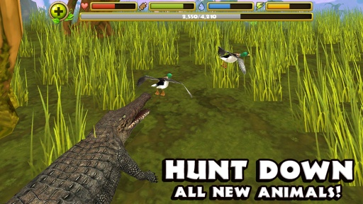 鳄鱼模拟器截图3