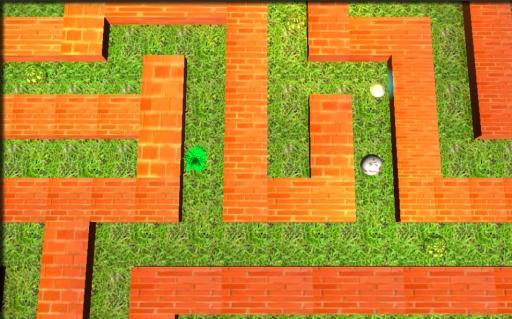 迷宫球3D