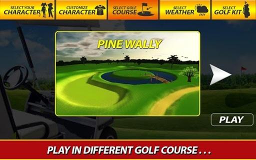 职业高尔夫玩3D