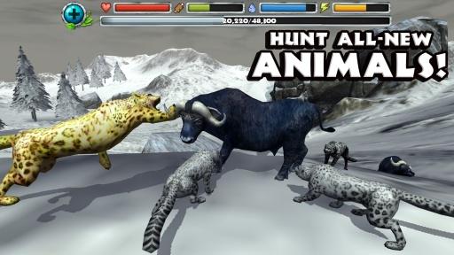 雪豹模拟器截图4