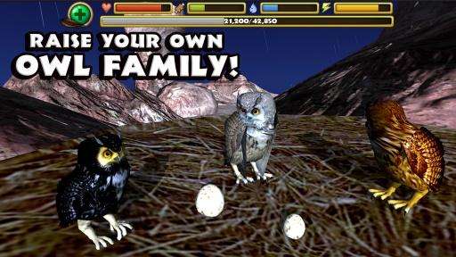 猫头鹰模拟器截图1