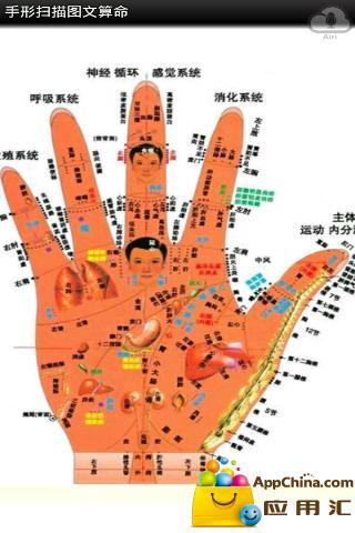 手形扫描图文算命截图2