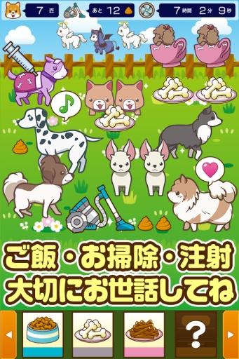饲养狗狗 截图1
