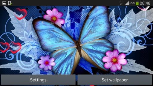最好的高清壁纸蝴蝶,动物,水滴,动物和可爱的背景.