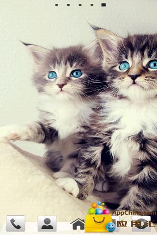 GO主题-可爱小猫咪
