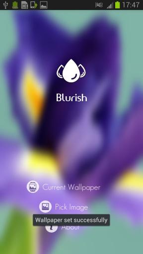 Blurish - 模糊壁纸免费截图3
