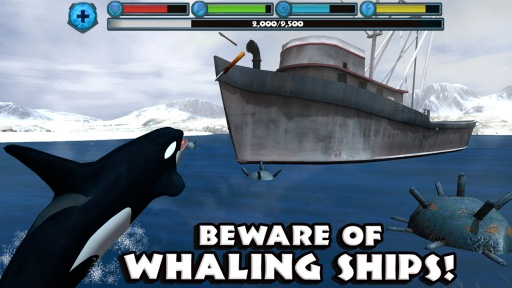 虎鲸模拟器截图1