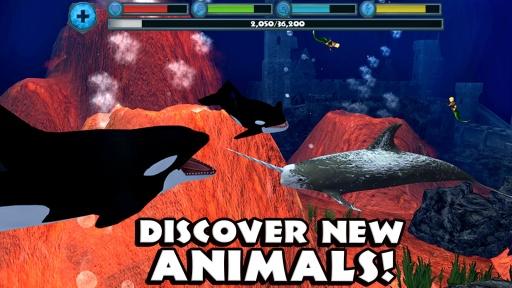 虎鲸模拟器截图2