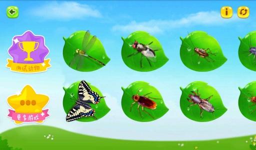 鞭虫虫卵手绘图