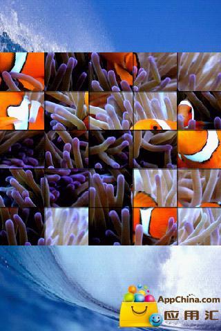 海洋生命拼图