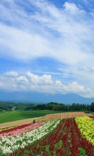 3d绝美自然风景高清动态壁纸