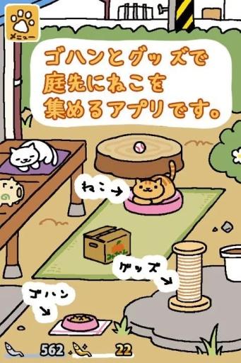 猫咪后院截图1