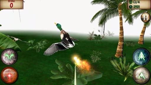 野生龙:鸟猎人