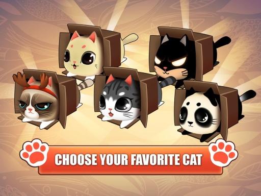 盒子里的猫截图0