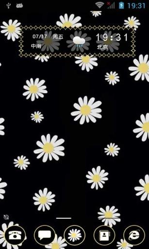 白菊花-91桌面主題壁紙美化