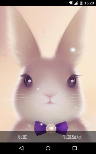 兔兔-梦象动态壁纸