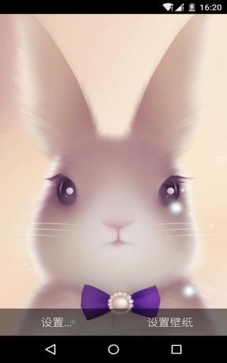 兔兔-梦象动态壁纸截图1