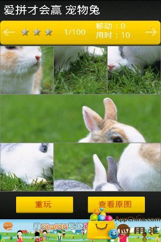 爱拼才会赢 宠物兔截图0