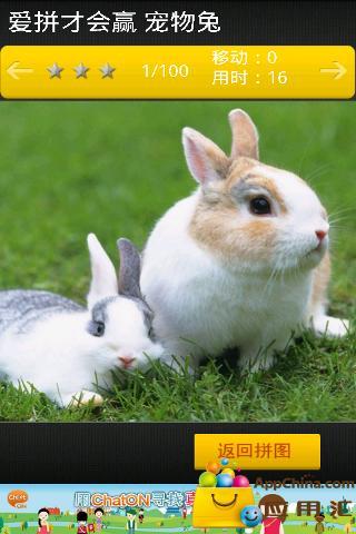 爱拼才会赢 宠物兔截图1