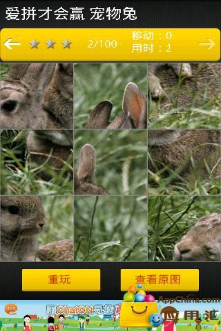 爱拼才会赢 宠物兔截图4