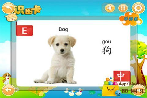 宝宝双语识图卡-动物