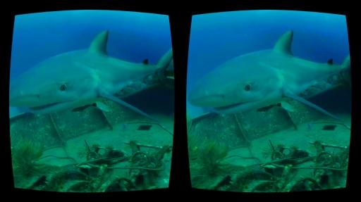 探索频道虚拟现实:Discovery截图3