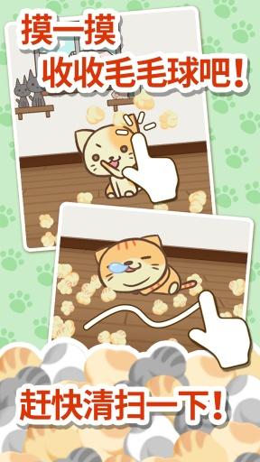 猫咪的毛截图1